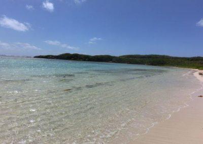 plage-petite-terre.jpg-37